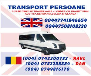 Transport persoane ANGLIA