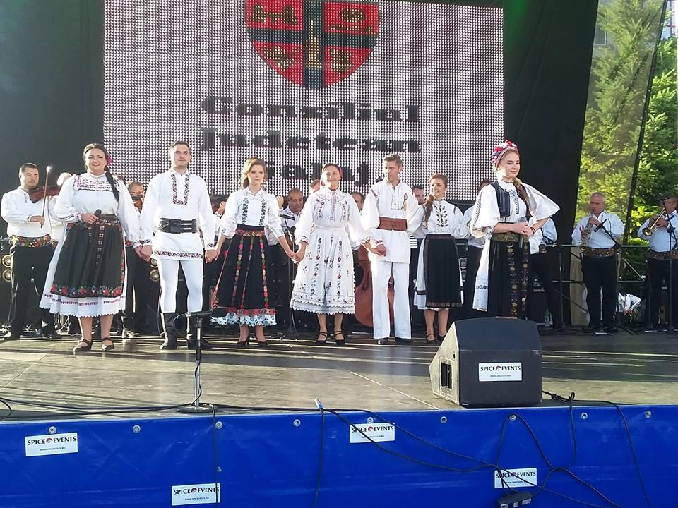 """Ansamblul """"Meseșul"""", în festival la Cugir (17-18 septembrie)"""
