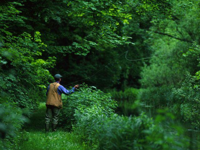 Amenzi aplicate de jandarmii sălăjeni, pentru pescuit în perioada de prohibiţie