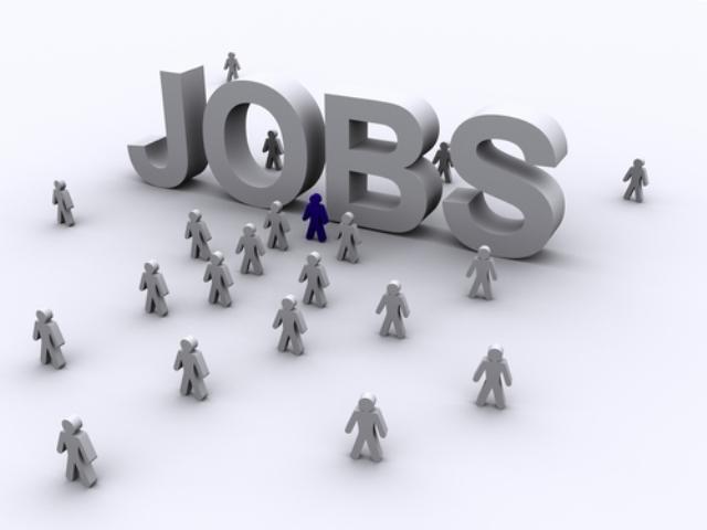 156 locuri de muncă vacante în județul Sălaj