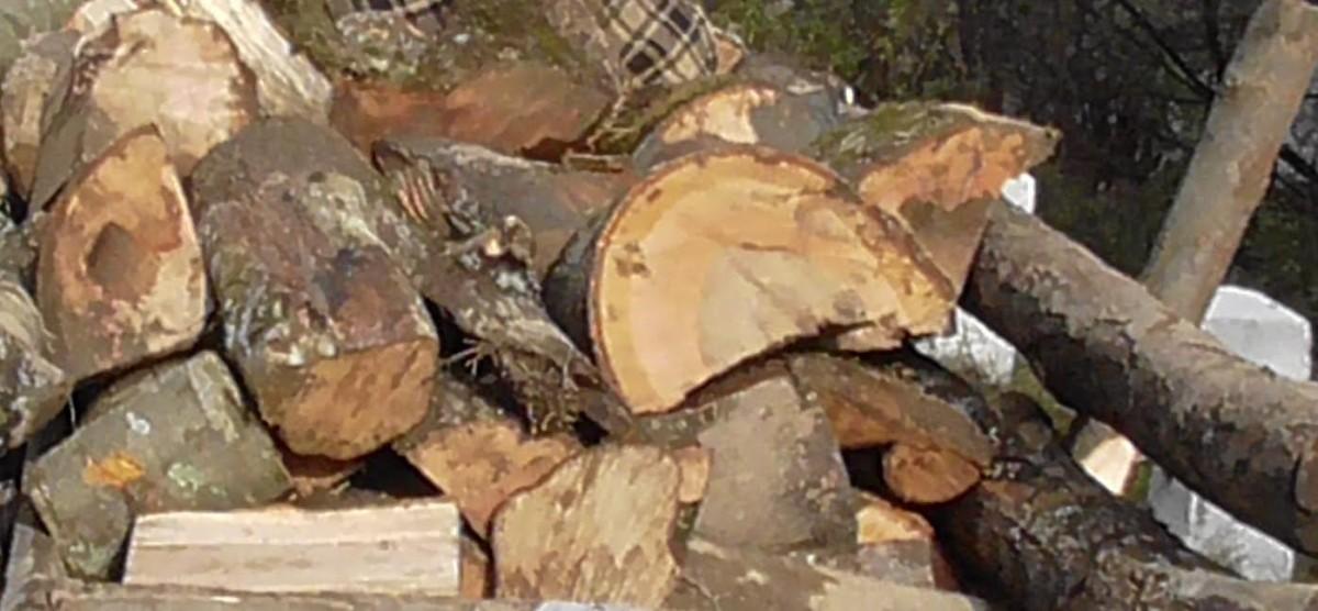 Material lemnos confiscat de polițiștii din Plopiș